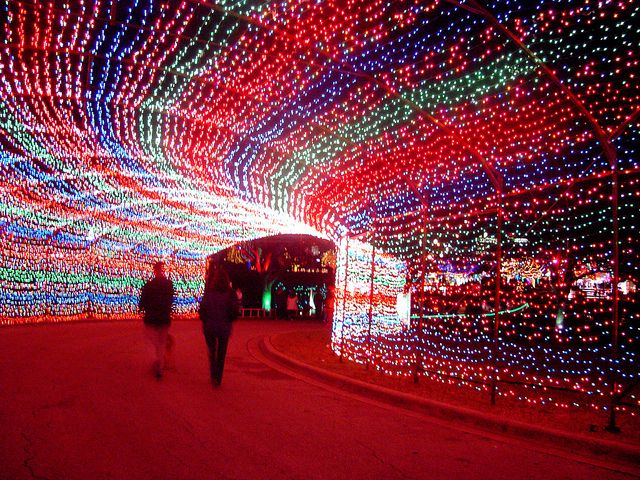 People walking at the Austin Trail of Lights.